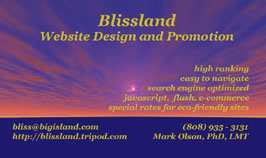 blissland website design and promotion
