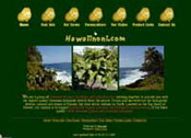 Hawaiinoni.com, 2000
